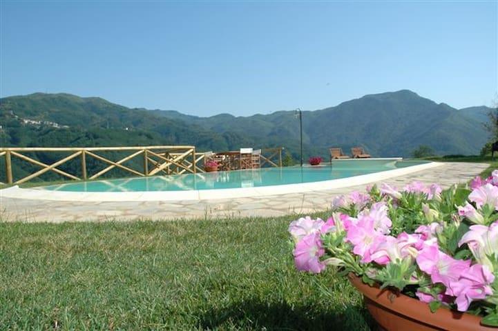 """I Grocchi"" Casa Zelinda - Borgo a Mozzano - Apartment"