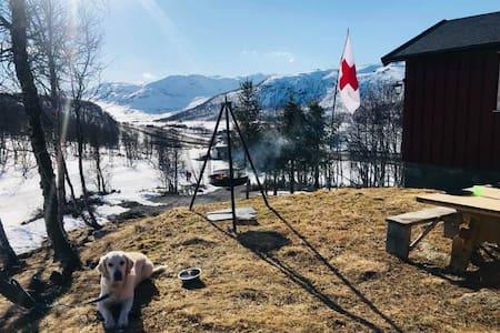 Stor hytte på Filefjell med utsikt og mykje sol!