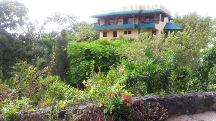 Casa Arroyo: Secluded, Private, Ocean View, Beach!