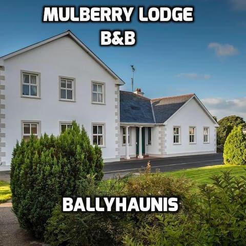 Mulberry Lodge B&B Ballyhaunis - Ballyhaunis