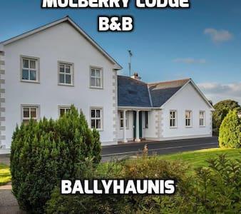 Mulberry Lodge B&B Ballyhaunis - Ballyhaunis - Wikt i opierunek