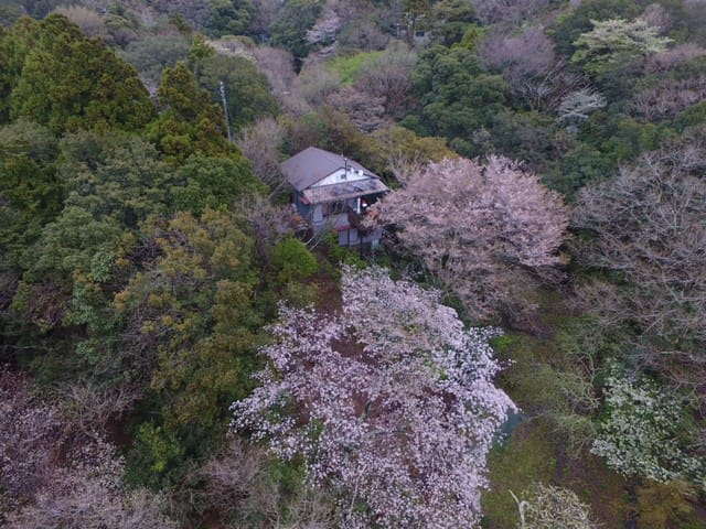 Secluded Shimoda forest cottage close to beaches