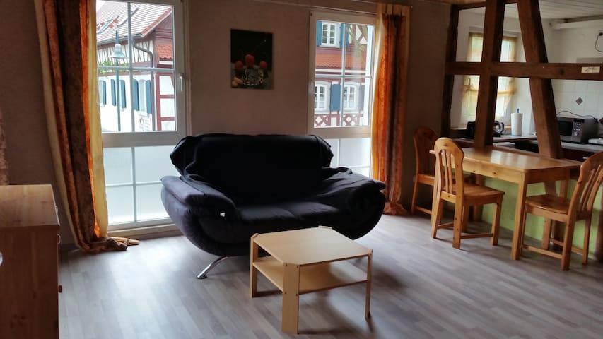 helle Fachwerk-Whg. in Friesenheim - Friesenheim - Apartment