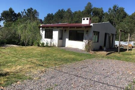 Alquiler casa punta del este - Balneario Buenos Aires - Haus