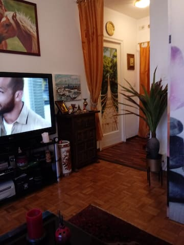 Nice apartment in city center of Lausanne