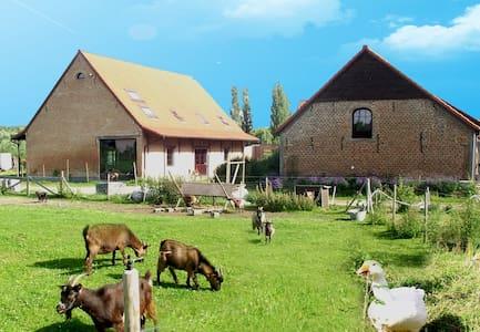 De Plukboerderij 2 to 19 pers - Schelle - Bed & Breakfast