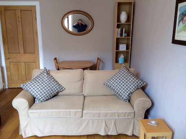 Central, comfortable 1BD Apartment - Edinburgh - Lägenhet