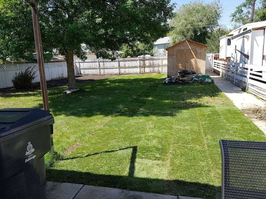 Back yard. In the process of laying sod.