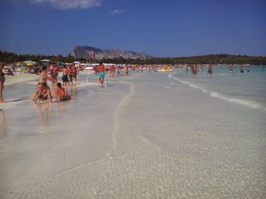 Spiaggia di Lu Impostu da cui si può accedere per raggiungere la famosa spiaggia di Brandinchi.