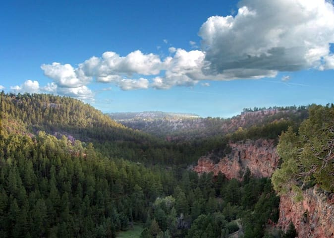 Founders Cabin on the rim of RED CANYON - Custer - Cabin