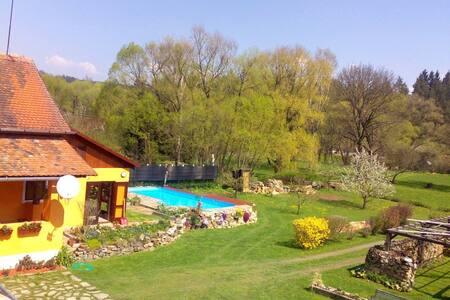 Dům  s krásnou zahradou v přirodě - Písečné - Chalet