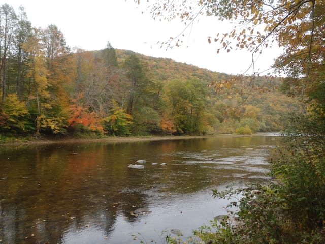 Greenbrier River House - Lewisburg - Kabin