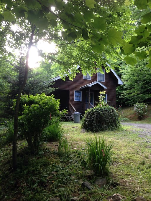Beautiful Cabin In The Woods Cabins For Rent In Plumtree