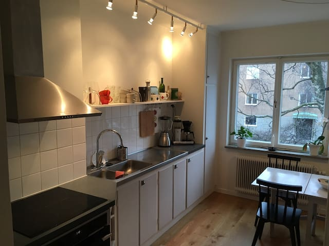 Charming and nice apartment near Södermalm - Estocolm - Pis