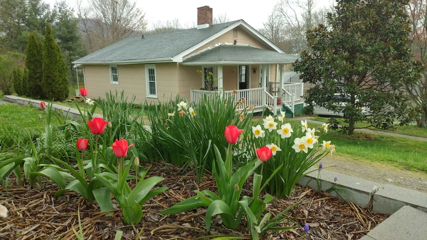 Asheville 2 Cozy Bungalow. Pets OK!  5 Min To Dwtn