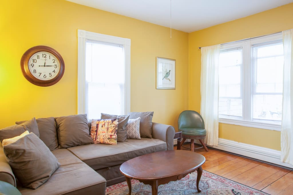 large one bedroom near harvard mit apartments for rent in cambridge