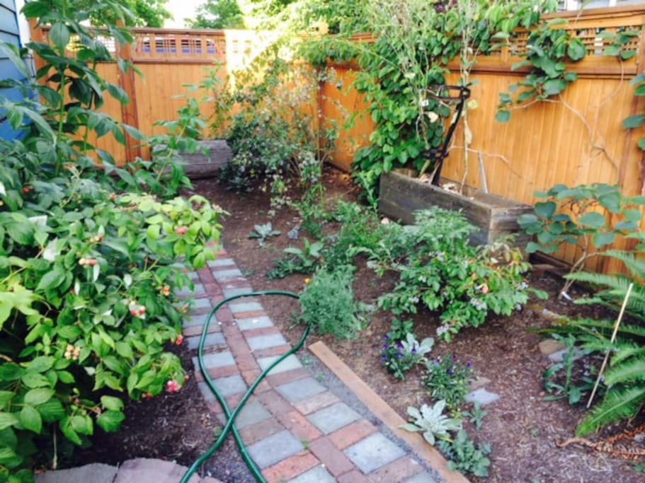 Backyard with garden and grill