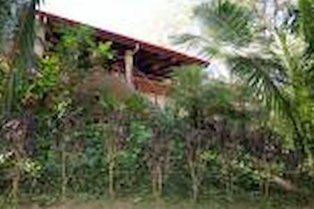 NR BEACH LUX  TREE HOUSE W POOL - Ház