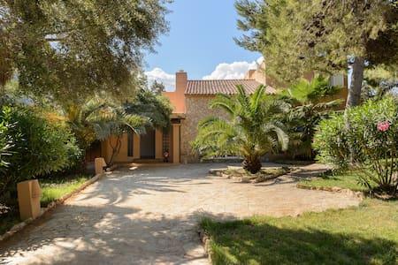 Tipica Villa Ibizenca con piscina - Villa