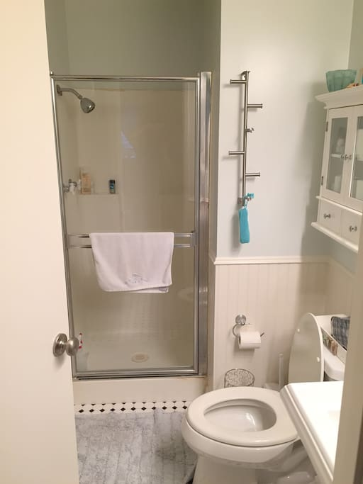 Private bathroom/shower