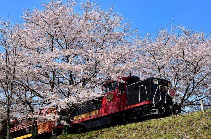 JR嵐山站 歩行 3 分庭院house