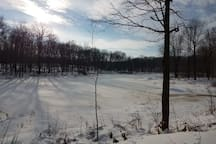 The pond in the winter