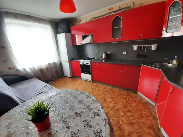 Просторная квартира на Барбошиной поляне