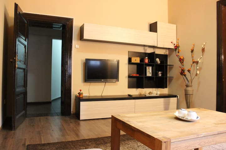 Cozy Central Apartment Oradea