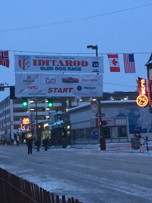 Minutes to downtown, view the start of the Iditarod!