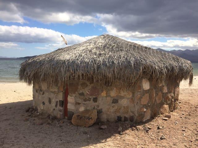 Campo Archelon: Palapa Tortuga
