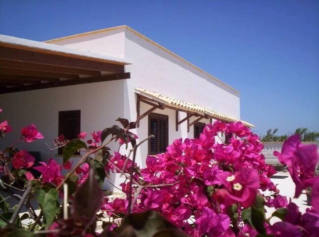 Casa Vacanza Emiros Tre fontane - Tre Fontane - Villa