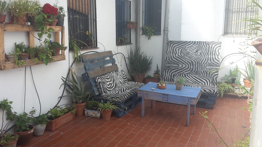 Habt. en los Patios de Córdoba - Córdoba - Casa