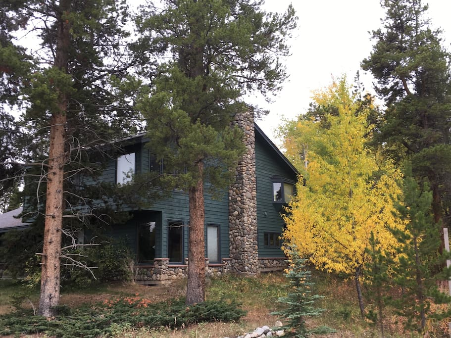 Mountain home surrounded by Pines and Aspens with views of Peak 1 & 2