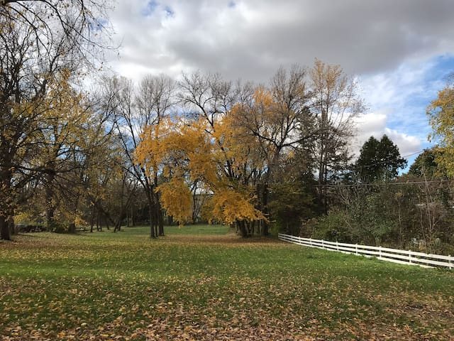 Ginseng Acre, once the site of St. Olaf College's ginseng farm, is a peaceful retreat but very close to dining, trails, and colleges.