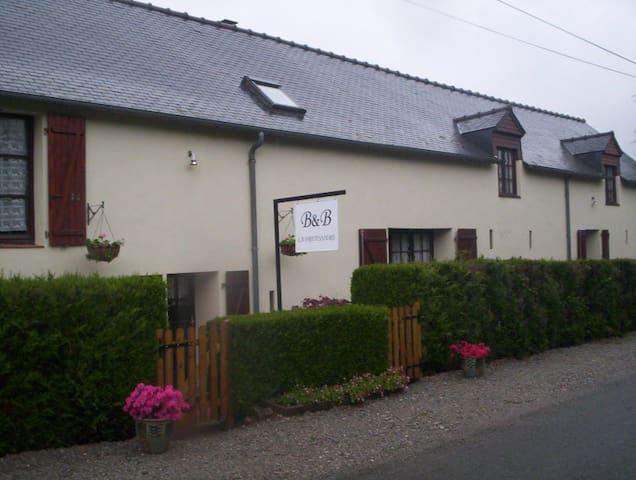 Querky B&B near historic St Suzanne - Torcé-Viviers-en-Charnie
