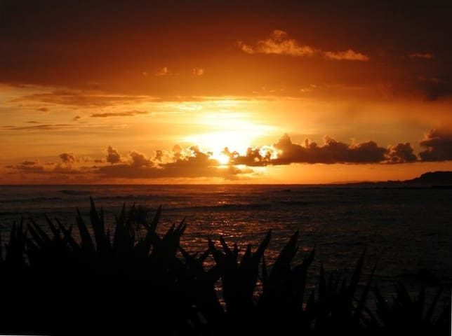 Poipu Oceanfront Dream Getaway at Kuhio Shores