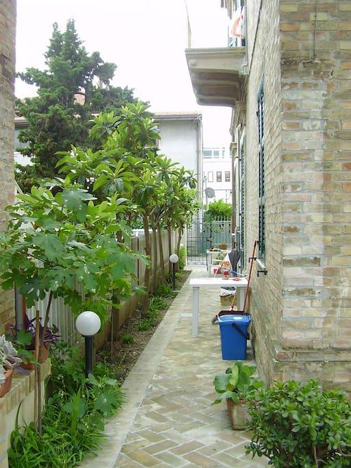 Appartamento Con Giardino Appartamenti In Affitto A
