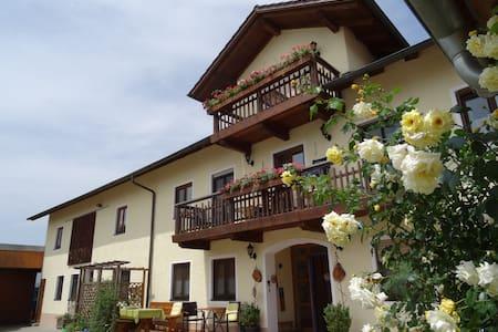 Weber-Hof Fam.Rieger- Ferienwohnung - Dietersburg - Apartament