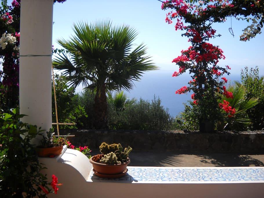 the breakfast terrace 2