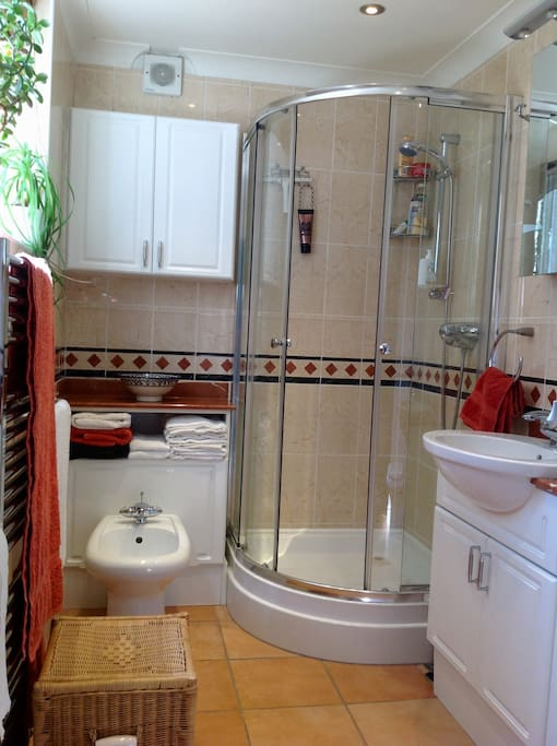 Luxurious bathroom with power shower and marble counter tops