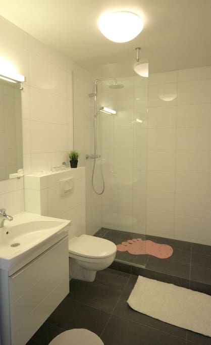 Bathroom recently fully renovated.