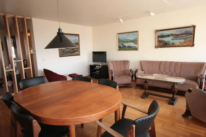 Cozy Reykjavik Apartment