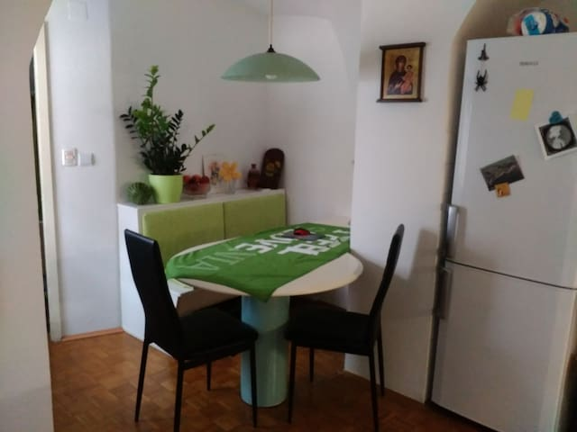In the city center, museums, events... - Kranj - Apartament