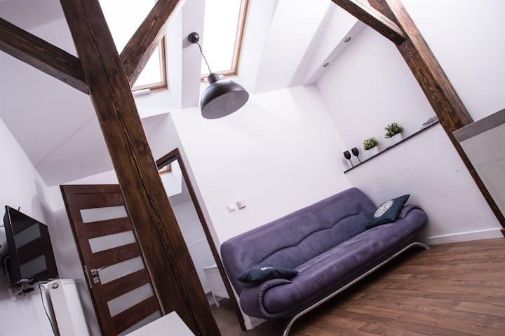 Elegancki apartament w ścisłym centrum/Kazimierz-Stare Miasto/Mirror Silver