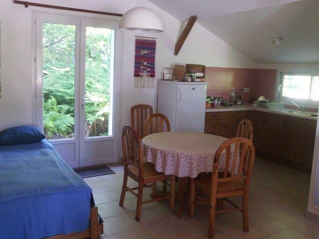 Petite maison à 2 pas du lac de Sanguinet - Sanguinet - House