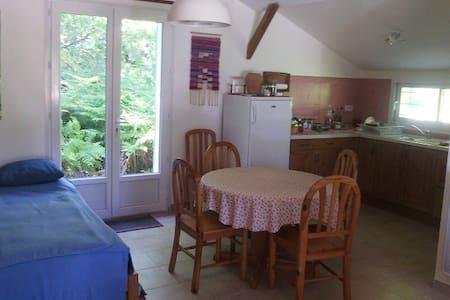 Petite maison à 2 pas du lac de Sanguinet - Sanguinet - Casa
