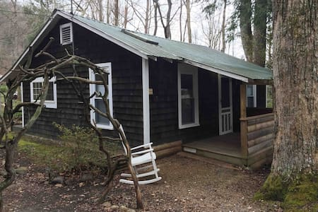 Cabin With Deck on Creek, 20 Mins From Asheville!