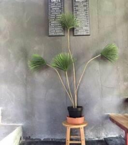公寓式豪华房 - Zhaoqing Shi - Apartment