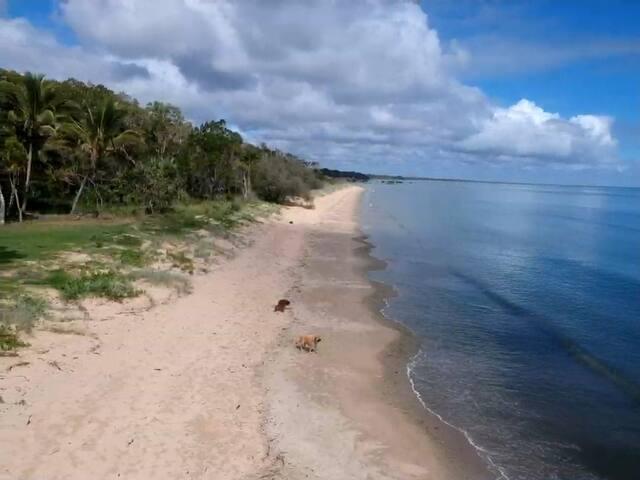 Beach-front Hervey Bay unit among tropical gardens