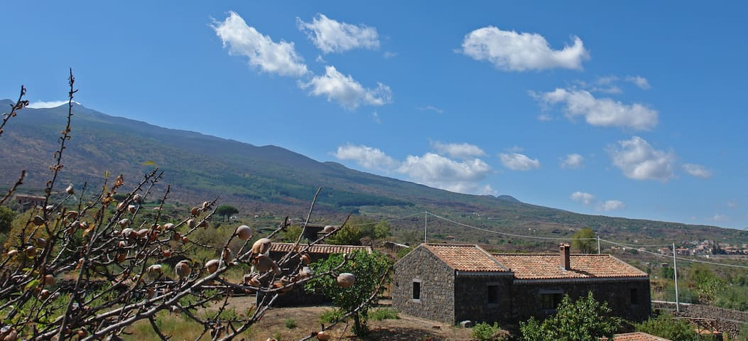 Cottage among the Etna's vineyards - Castiglione di Sicilia - Casa